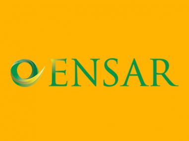 Ensar Logo Design